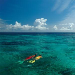usvi-snorkeling