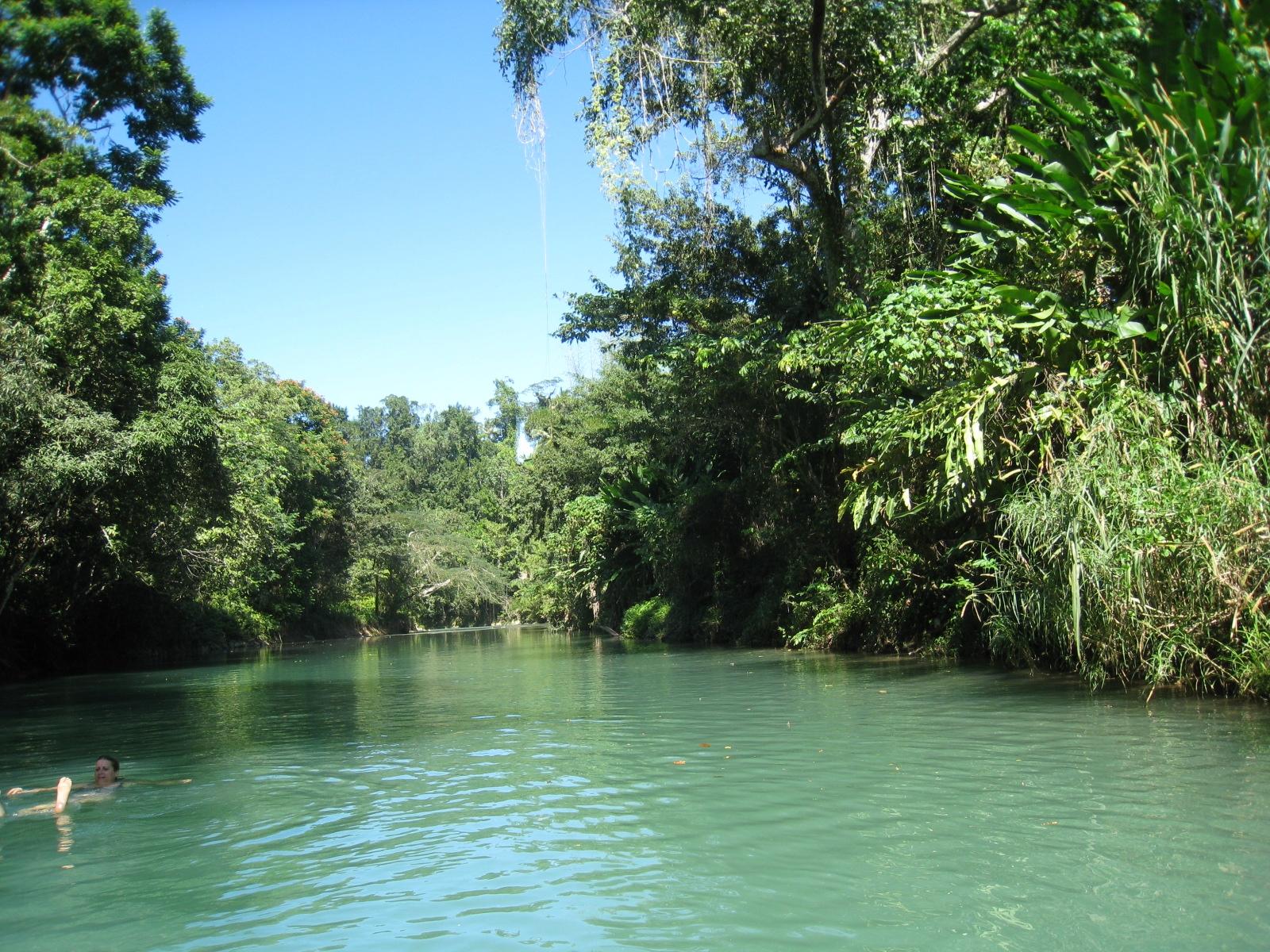 Jamaica Rio Grande River - just beautiful