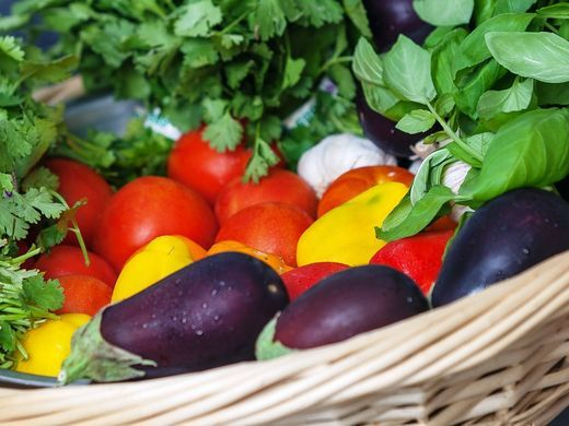 635998619623604726-Hydroponic-Farm-basket-of-eggplants-and-peppers-credit-CuisinArt-Golf-Resort-Spa