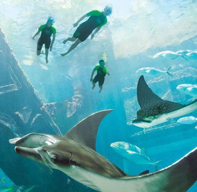 Caribbean Resort Photo Tour: Atlantis Paradise Island