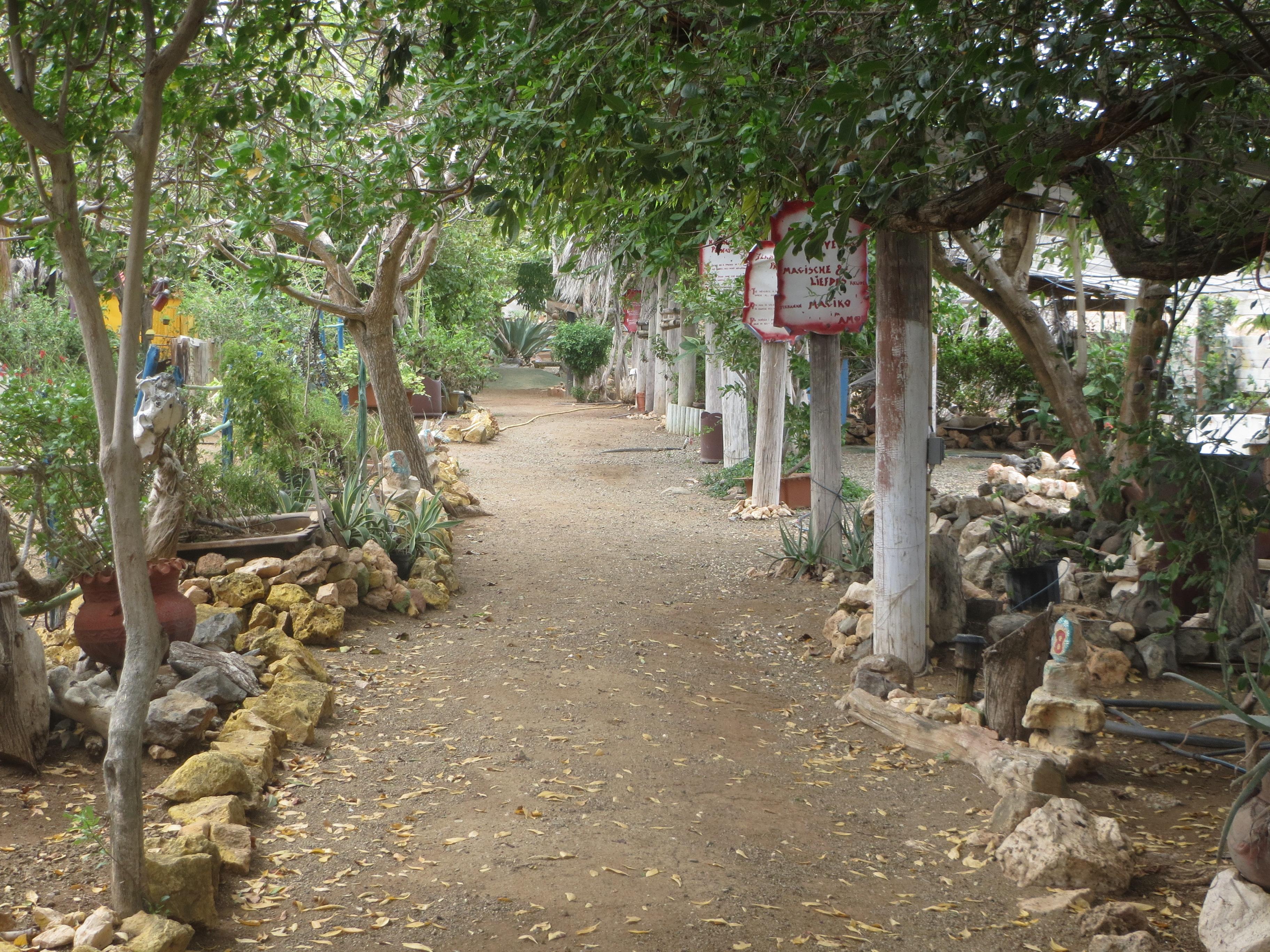 Curacao herb garden. Melanie Reffes