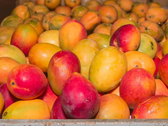 Dubbed the 'King of all Fruit' by those in the know, mango trees were brought to Antigua by Portuguese traders and are considered a symbol of love (not to mention that they're loaded with nutrients and vitamins). Photo Credit Antigua Tourism