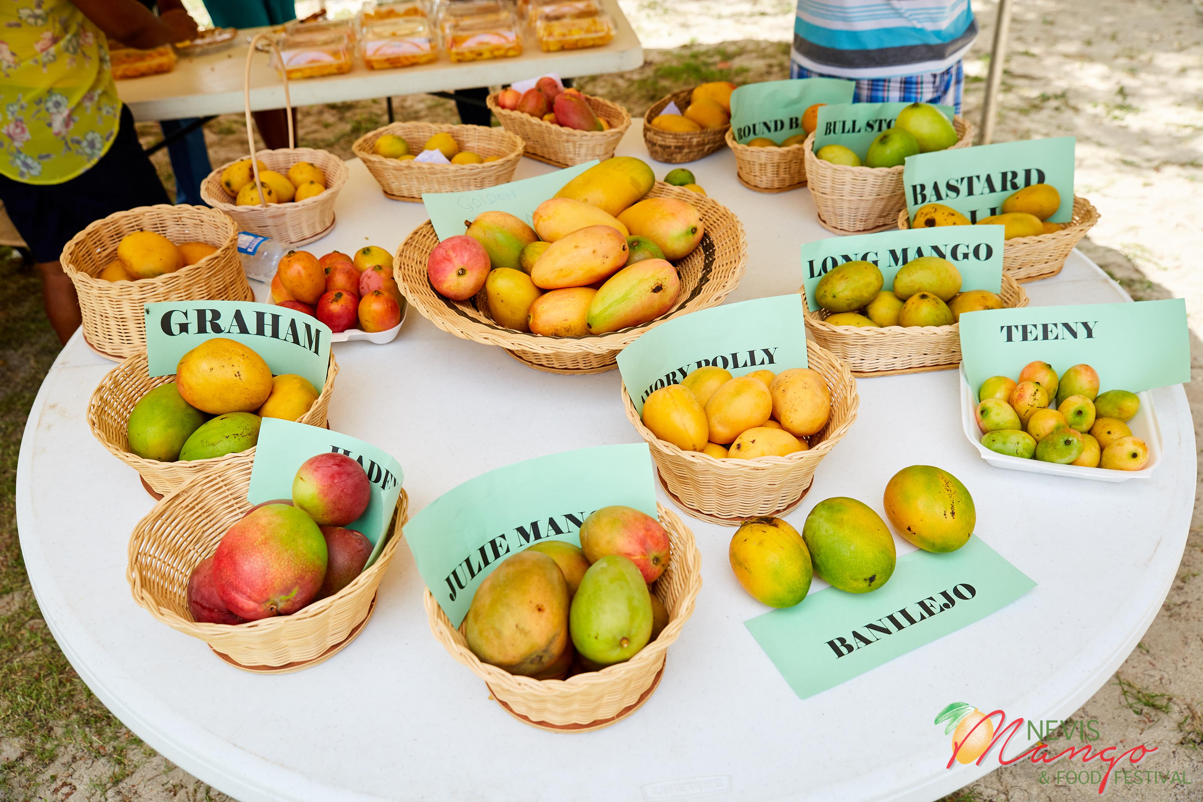1a90ebff8 Mango Madness in Nevis