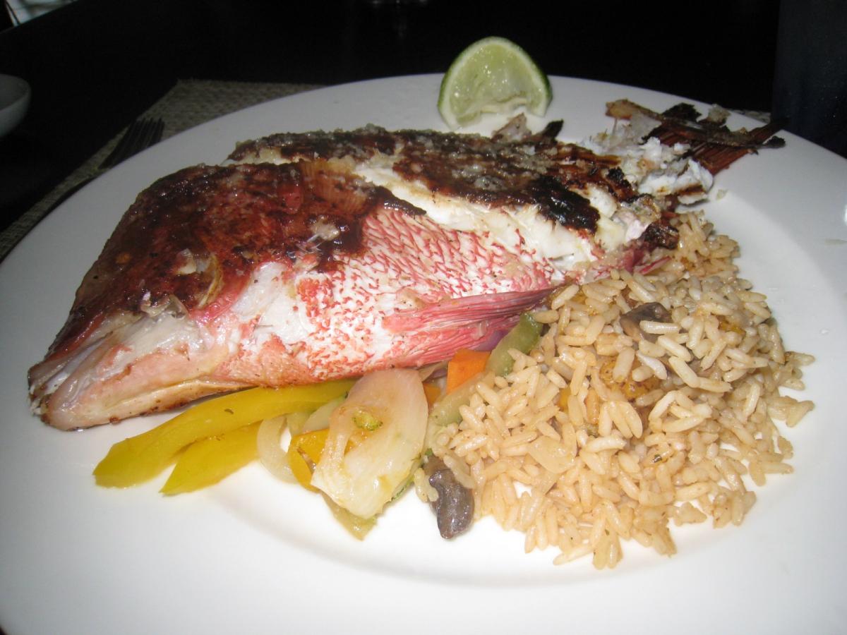 Cancun November 30 2013 722